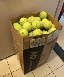 link to 120 old tennis balls