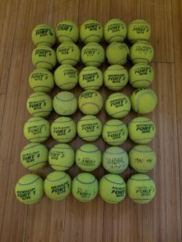 link to 35 used Dunlop Fort Elite tennis balls