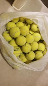 link to 2nd hand dunlop coaching balls