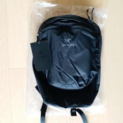 link to ARCTERYX index 15 Backpack 不死鳥