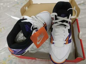 link to Andre Agassi Nike Air Tech Challenge 3